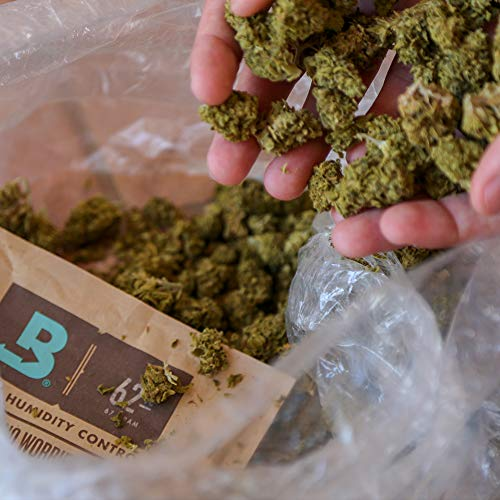 Cultivator storing weed in a turkey bag with Boveda, the original terpene shield.