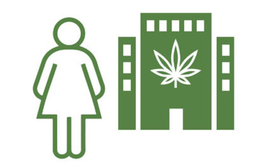 More Women in the Cannabis C-Suite