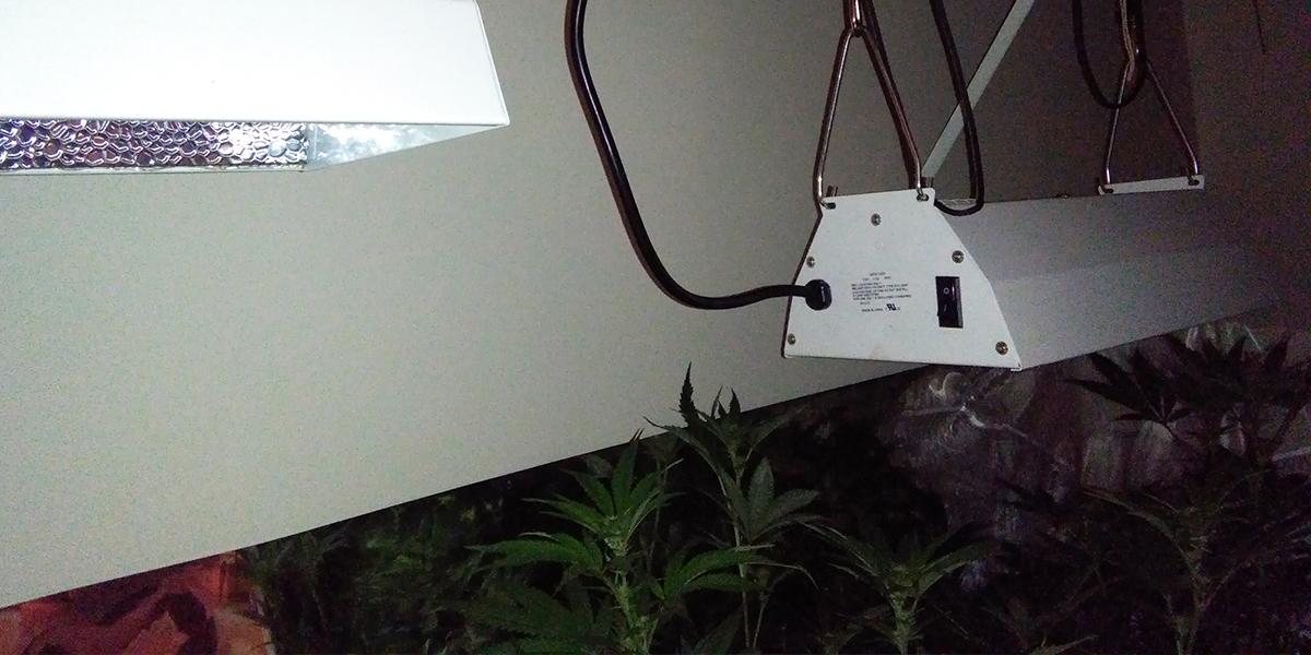 Vertical_Light_Adjustment_Home_Grow