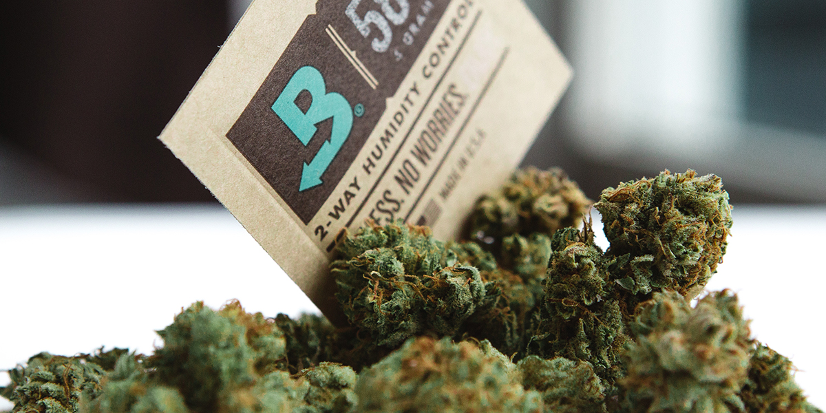 Boveda with Buds