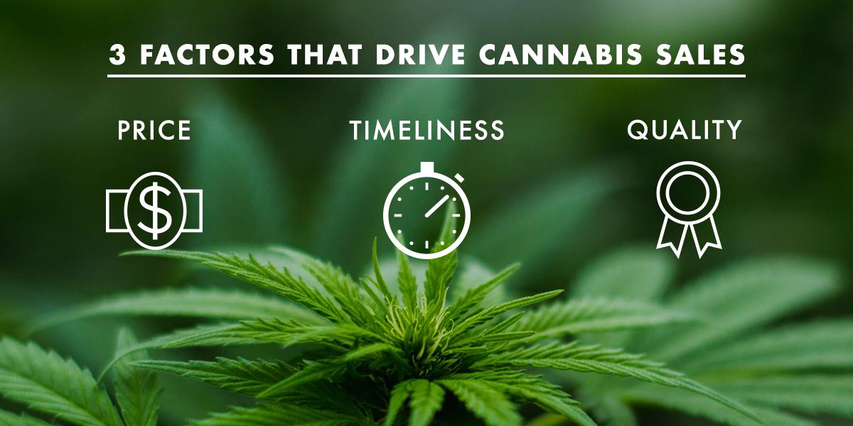 3 Factors That Drive Cannabis Sales