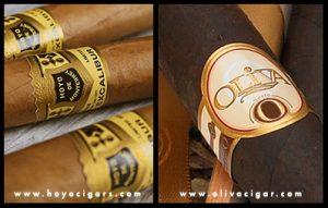 Cigar Comparison - Hoyo - Oliva