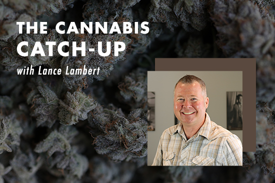 Test Your Cannabis Knowledge