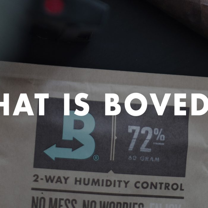 What is Boveda video thumbnail