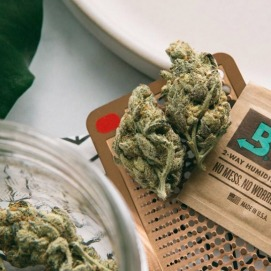 Cannabis flower and Boveda pack