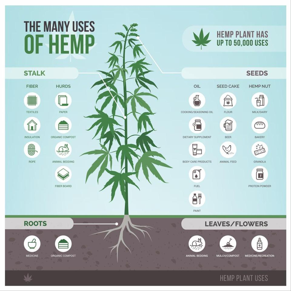 The Many Uses of Hemp, POTNETWORK, including smokable hemp flower that farmers protect with Boveda, the original terpene shield